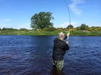 Catching River Tay Salmon