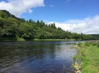 Late Spring On The River Tay