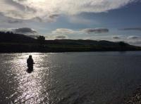 Salmon Fishing Relaxation