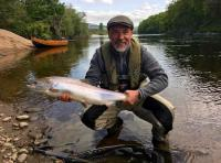 Perfect River Tay Salmon