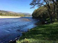 The Perfect Salmon River Vibe