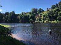 Salmon Fly Fishing Event Days