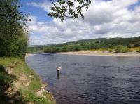Learning The Scottish Speycast
