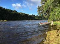 Fishing The Scottish Rivers