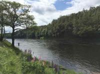 Scottish Salmon Fishing Venues