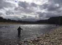 Professional Salmon Fishing Event Staff