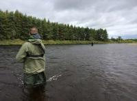 The Art Of Salmon Fishing