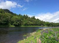 Paradise On The River Tay