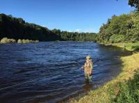The Ambiance Of The Salmon River