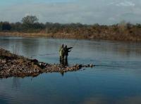 Fantastic Riverbank Scenery