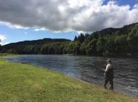 Enjoying The Riverbank