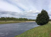 Perfect Riverbank Settings