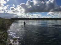 The Enjoyment Of Salmon Fishing