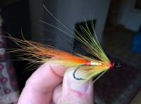 Fishing The Salmon Fly