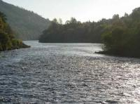 The Beautiful Streams Of The Tay