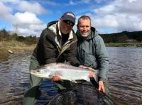 Beautiful River Tay Spring Salmon