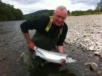 Fantastic Salmon Fishing Moments