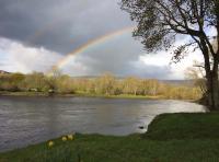 Natural River Beauty