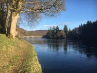 Perfect Riverbank Ambiance