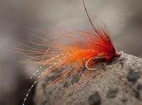 Beautiful Salmon Flies