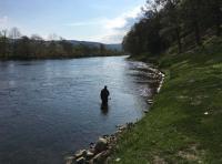 Learning Salmon Fishing Skills