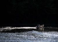 River Tay Briliance