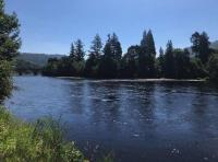 Perfect Salmon Pools Of The River Tay