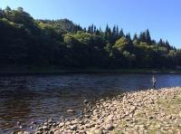 Book Some Salmon River Therapy